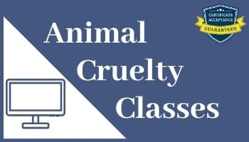 Online Animal Cruelty Classes Pet Abuse Neglect